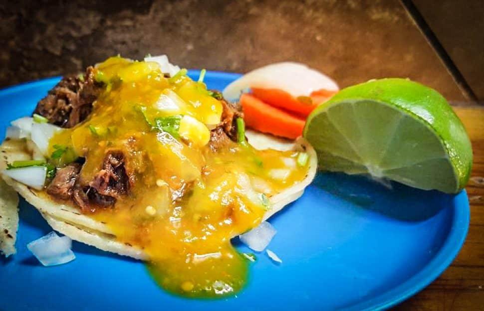 The taco al vapor with lengua at El Bukana's. Photo by Brian Addison.