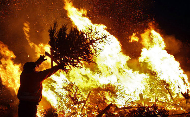 Burning Christmas Tree.Your Christmas Tree S Long Journey From Burning To Recycling