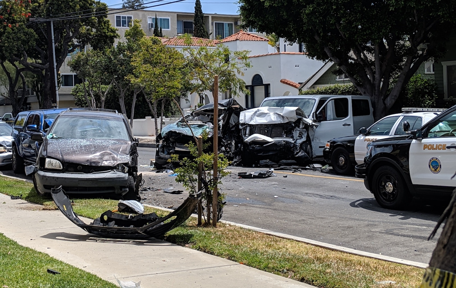 Woman and 5 dogs killed in crash that ended police pursuit • Long