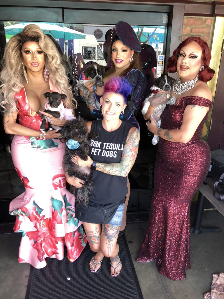 """Three drag queens and one woman pose with dogs. The queens have colorful, bright clothing and the woman has short magenta hair and a T-shirt that says """"Drink tequila! Pet dogs!""""that says"""