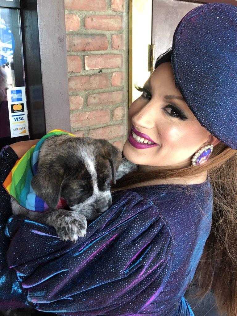 Drag performer wearing a blue platter hat and a matching blue dress holding an English bulldog-mix puppy.
