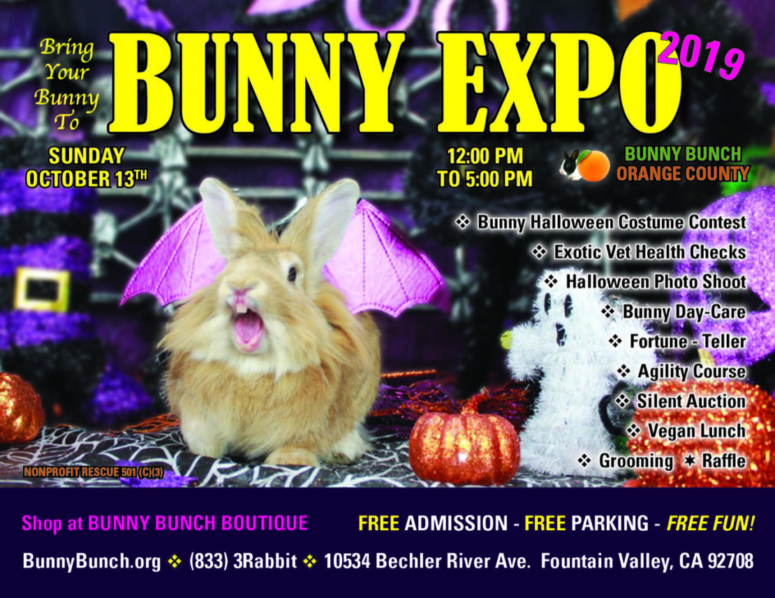 Sign for the Bunny Expo with a rabbit dressed as a vampire and a ghost and pumpkin statues nearby