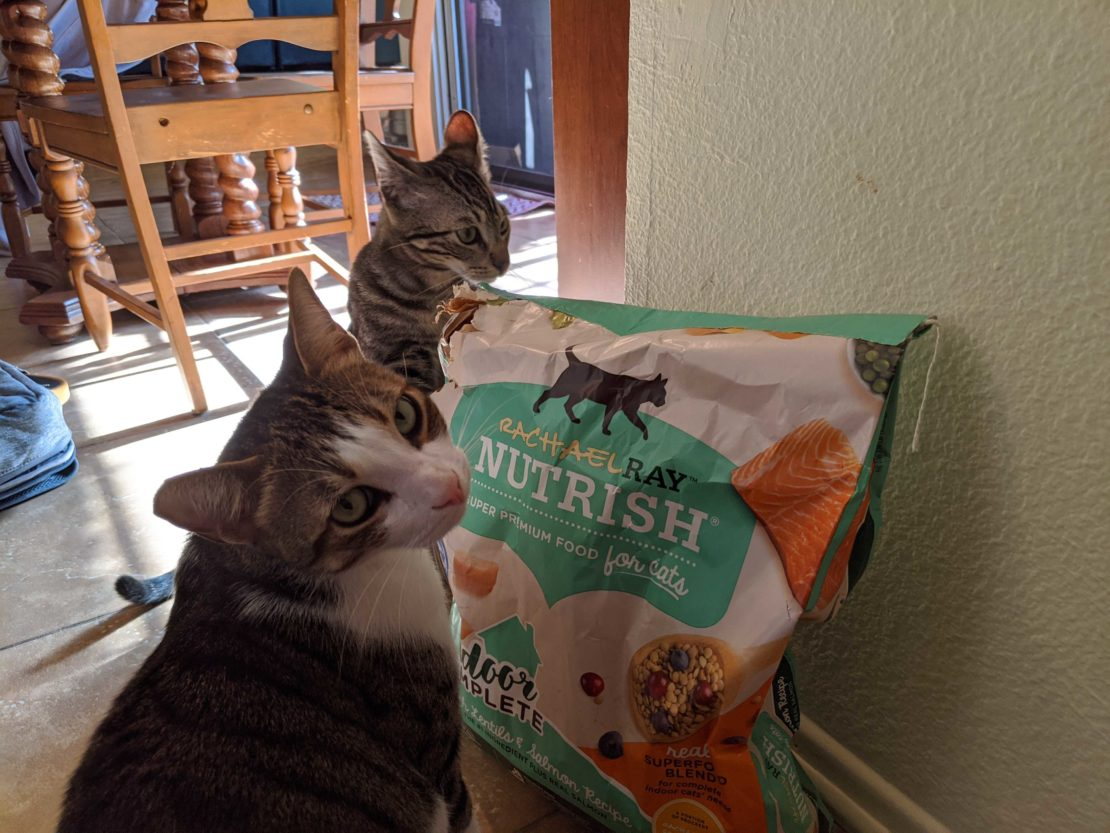 tabby with white mask and chest and pink nose, and brown tabby with ears back in a funny position stand near a large bag of Nutrish cat food.