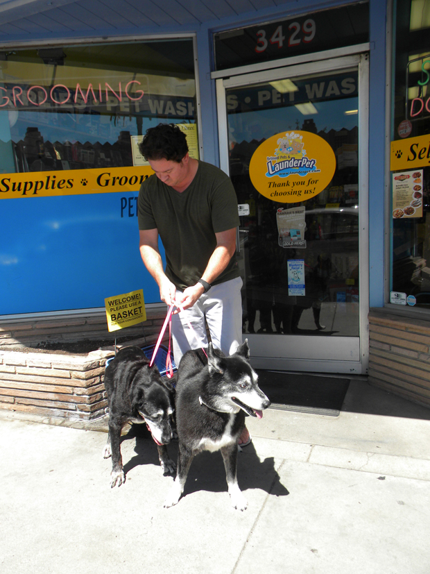 Reg Lapham with Molly lab mix and Luna Husky
