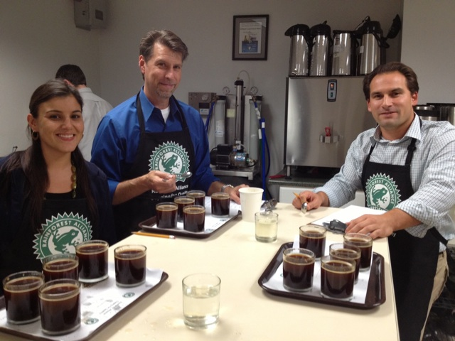 Rainforest Cupping 2012