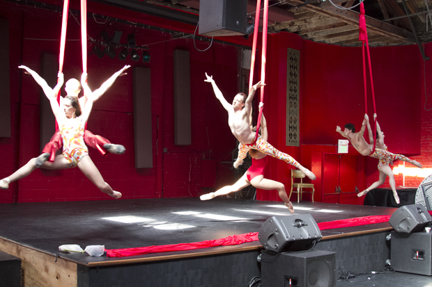 Luminario Ballet by Nguyen Nguyen