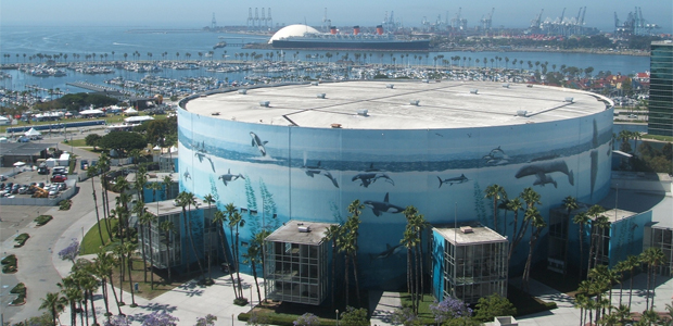 Long Beach To Host Ymca National Gymnastics Championship In 2016 For The First Time