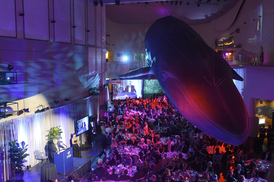 Blue Whale Gala Great Hall