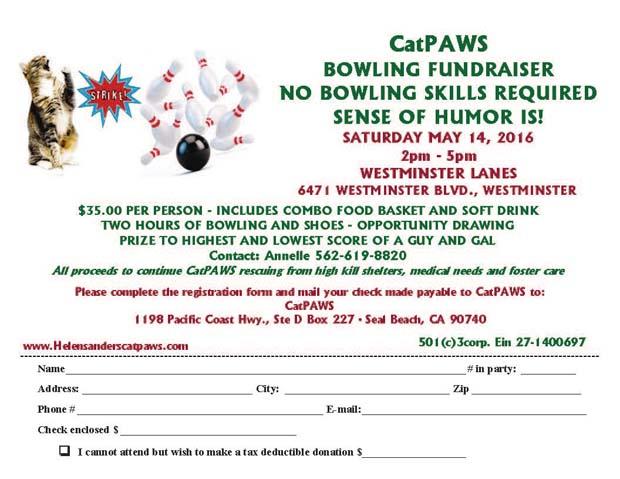 Bowling Fundraiser 2016