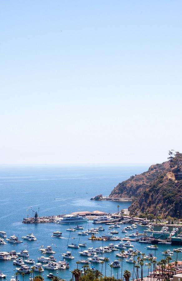 Catalina3