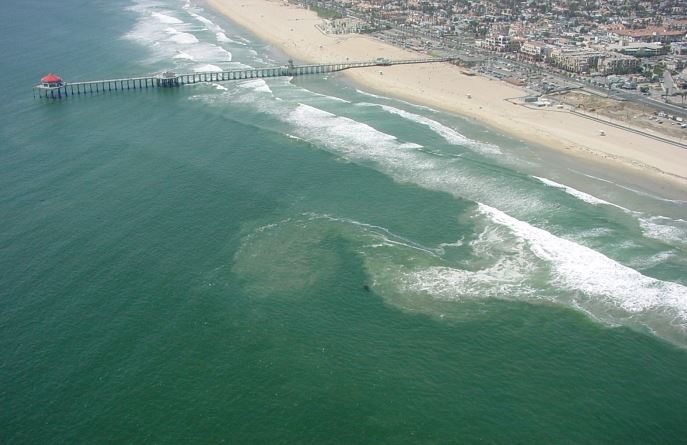 Long Beach Water Quality Report