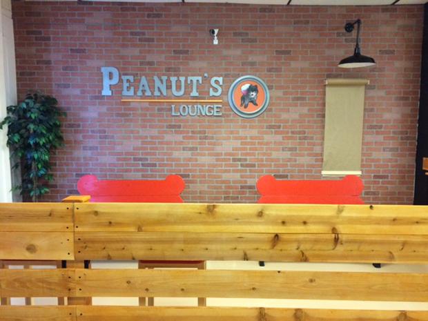 PEanuts lounge