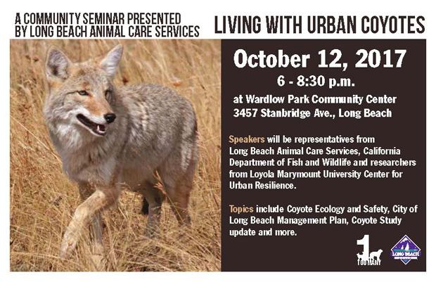 Coyote Meeting Flyer