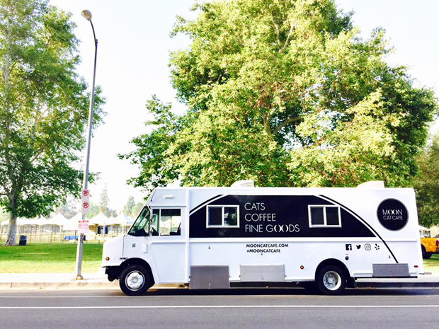 white truck with Moon Cat Cafe printed on it. Windows framed in black. In parking lot under trees.