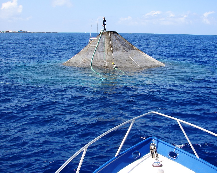 aquaculture GOM