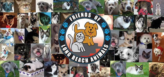 a cartoon gray cat and a cartoon tan dog, both with tags and collars, look happily out o a circle with Friends of Long Beach Animals written on it and blue pawprint designs. The background shows photos of cats and dogs that have been rescued.