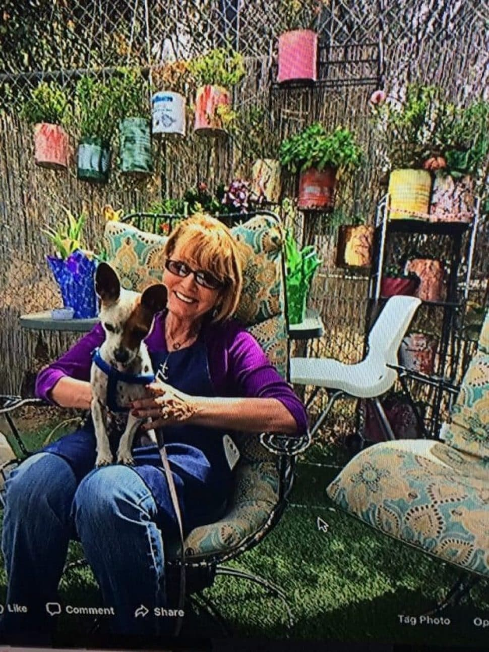 Smiling woman with short reddish hair and sunglasses holding a Chihuahua mix with big brown ears in her lap. The woman is wearing a purple top and jeans and is sitting in a garden area with bright pots hanging on a wooden wall.