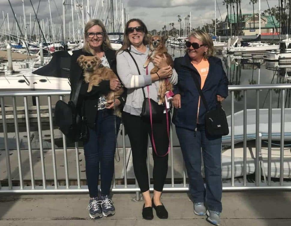 three women, two holding small brown dogs, standing at a railing overlooking a marina filled with boats on a beautiful, cloudy day