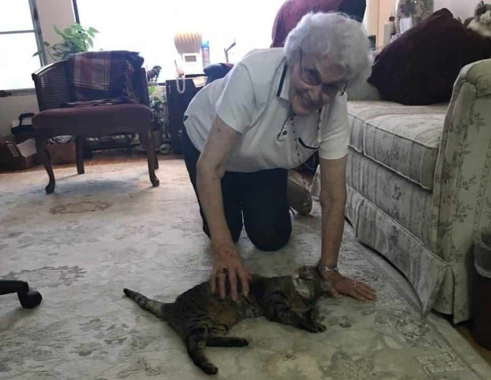 White-haired woman about 80 rubs her brown tabby cat's belly. The cat is lying on a gray rug with a scene of the city out the window.