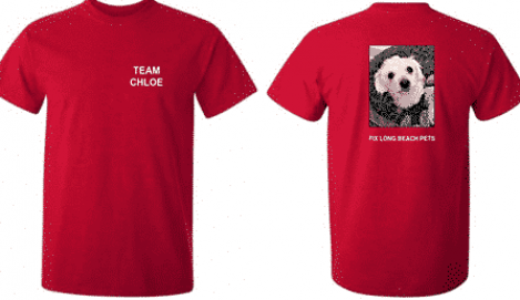 """two views of red T-shirts with the text """"TEam Chloe"""" on one view and a photo of a little white poodle mix with Fix Long Beach Pets under it."""