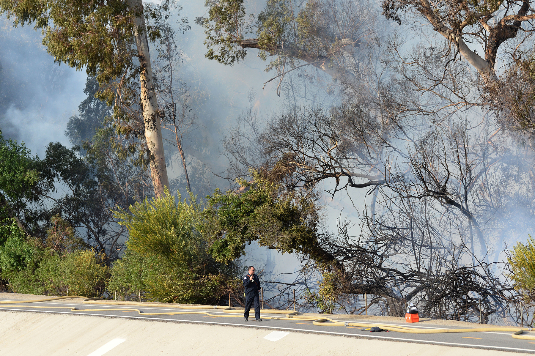 Officials suspect arson in East Long Beach blaze near El
