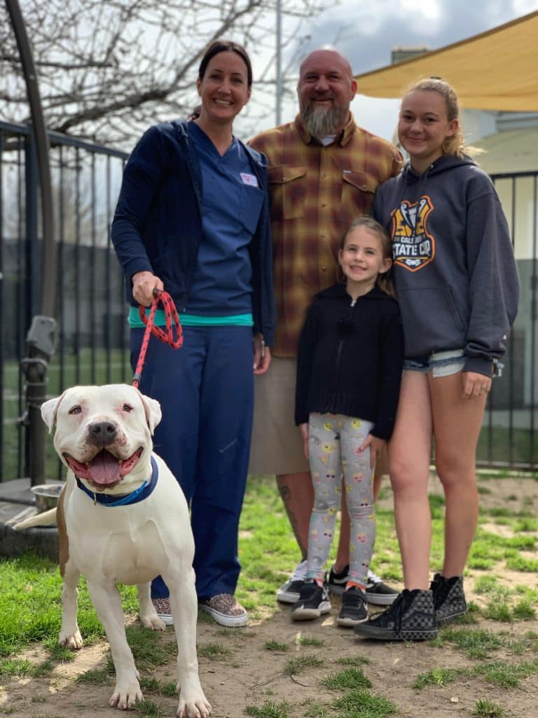 White pit bull infront of a family consisting of a man a woman, a teenage girl and a preteen girl